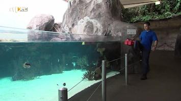 Burgers' Zoo Natuurlijk - Afl. 7