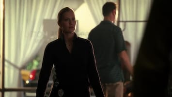 Csi: Miami One night stand