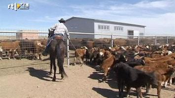 RTL Nieuws Cowboys in Kazachstan
