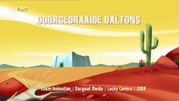 De Daltons Doorgedraaide Daltons