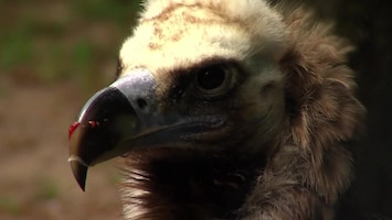 Uitgelicht - Afl. 23: Burgersâ' Zoo