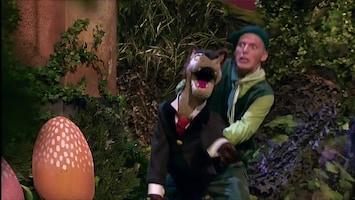 Sprookjesboomfeest - Hans En Grietje