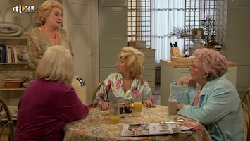 Golden Girls - Harry's Terugkeer