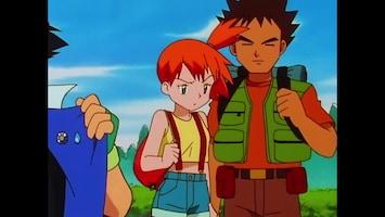 Pokémon Op weg naar het Pokémon Kampioenschap