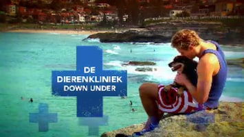 De Dierenkliniek Down Under Afl. 24