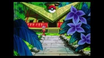 Pokémon - Een Poké Ball Met Hindernissen