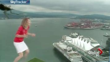 RTL Nieuws Weervrouw schrikt van spin op de camera