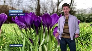 RTL Weer En Verkeer Afl. 111