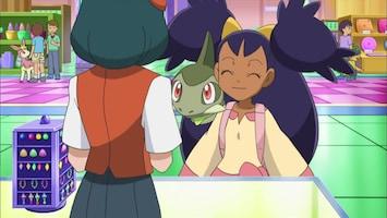 Pokémon - De Wraak Van Een Deskundige!