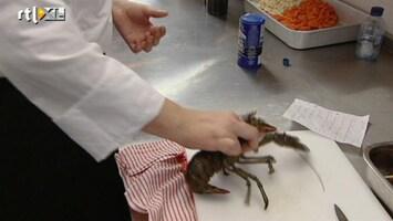 Herman's Restaurant School - Pak Die Kreeft Beet!