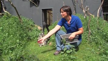 Burgers' Zoo Natuurlijk - Afl. 5