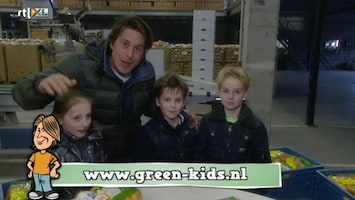 Green-kids Aardappelen
