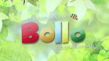 De Avonturen Van Bollo - Afl. 3
