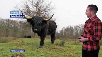 RTL Weer En Verkeer Afl. 147