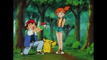 Pokémon Ash vangt een Pokémon!