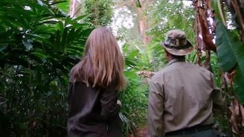 Stacey Dooley Onderzoekt: Drugs Over De Grens - Ecstacy-oorlogen In Cambodja