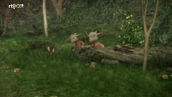 Sprookjesboom - Sprookjesboom /153