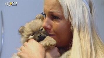 Samantha En Michael Willen Rust In De Tent! Samantha's liefde voor hondjes
