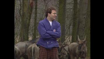Ernst, Bobbie En De Rest - Dierentuin - Ja Dan Moet Je Huilen