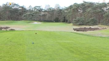 Golf In Business Afl. 4