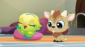 Littlest Pet Shop: A World Of Our Own - Afl. 16