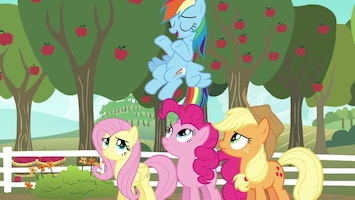 My Little Pony Afl. 19
