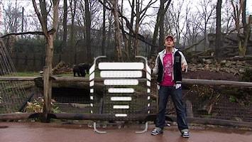 Burgers' Zoo En Waarom - Teun En De Zeekoe