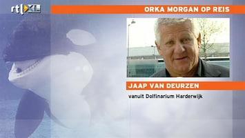 RTL Nieuws Grote politiemacht bij transport orka Morgan
