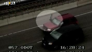 RTL Nieuws Hondje blokkeert snelweg
