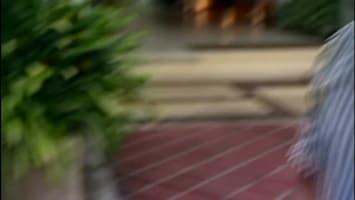 Stacey Dooley Onderzoekt: De Donkere Kant Van Een Droomvakantie Thailand