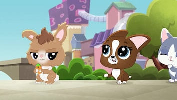 Littlest Pet Shop: A World Of Our Own - Afl. 33