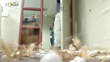 Editie NL Lol met muizenvallen en pingpong-ballen