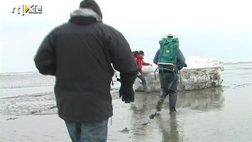 RTL Nieuws Wadlopen op bevroren zee