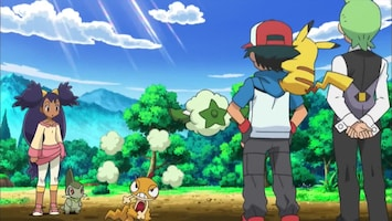 Pokémon Cottonee is verliefd!