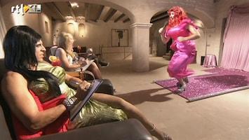 Herken De Homo! - De Travo Show