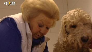 RTL Nieuws Koningin Beatrix wast honden