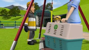 Brandweerman Sam - Wie Liet De Kat Los?