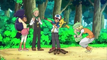 Pokémon - Minccino, Schoon En Netjes!