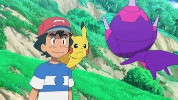 Pokémon - De Vorm Van De Toekomstige Liefde!