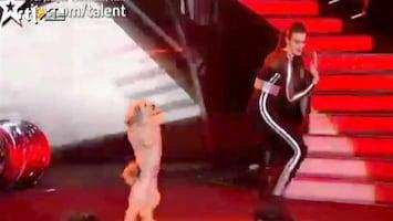 Editie NL Hond wint Britain's got talent