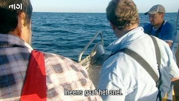 Extreme Fishing 2 /6