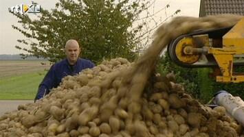 RTL Transportwereld Aardappelen