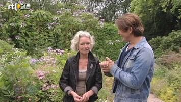 Eigen Huis & Tuin Wat zijn de droomtuinen van Jacqueline van der Kloet?
