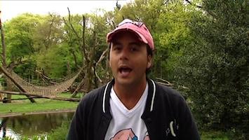 Burgers' Zoo En Waarom - Diego En De Zebra