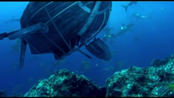 Piet Piraat Wonderwaterwereld De hengelaarsvis