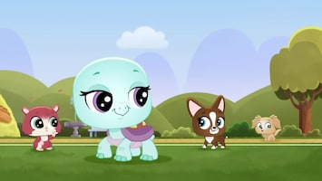 Littlest Pet Shop: A World Of Our Own - Afl. 42