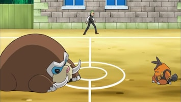 Pokémon Het mysterie van de vermiste Cubchoo!