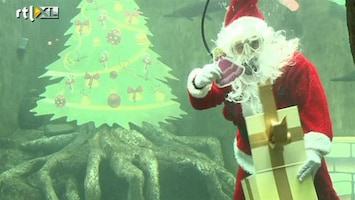 RTL Nieuws Nieuwe trend: kerstmis onder water