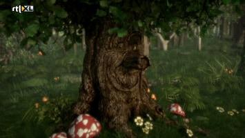 Sprookjesboom - Geitjesstoofpot