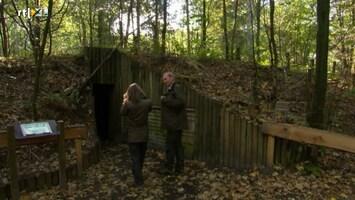 Tracks & Trails - Holtingerveld En Drents-friese Wold